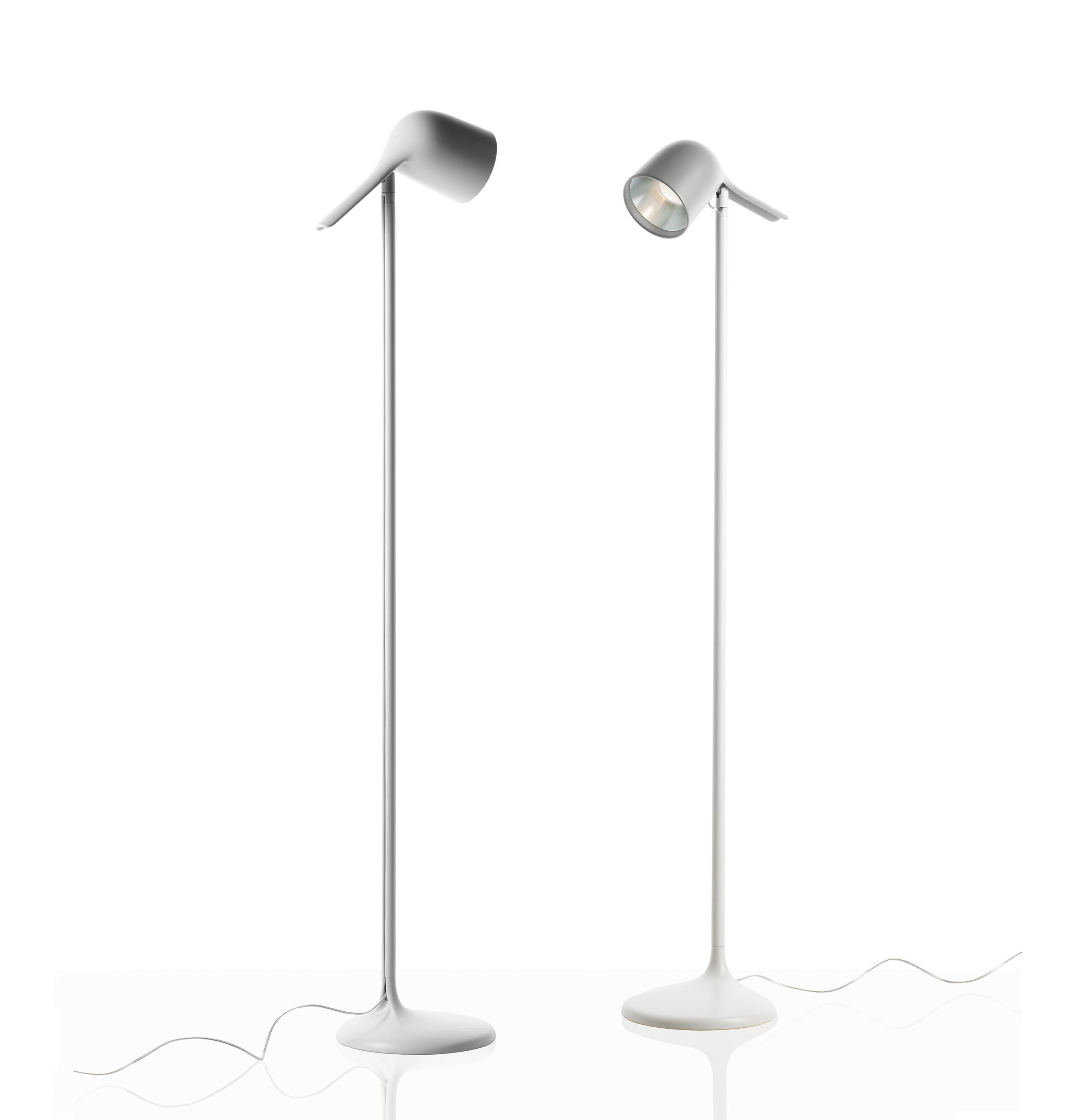 Foscarini Colibri Floor Lamp | buy from Campbell Watson UK